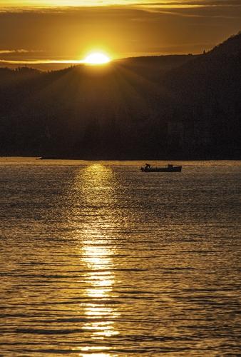 tramontino 1