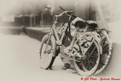 4 biciclette-salo